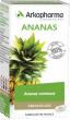 Arkopharma arkogélules ananas 45 gélules